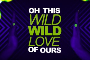 Pitbull ft. G.R.L. - Wild Wild Love [Lyric Video]